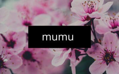 Vel_bndz – Mumu