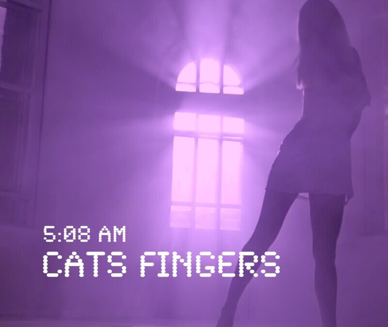 Cats Fingers – Don't stop me